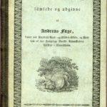 Typografisk omslag, boken Norske Sagn 1833