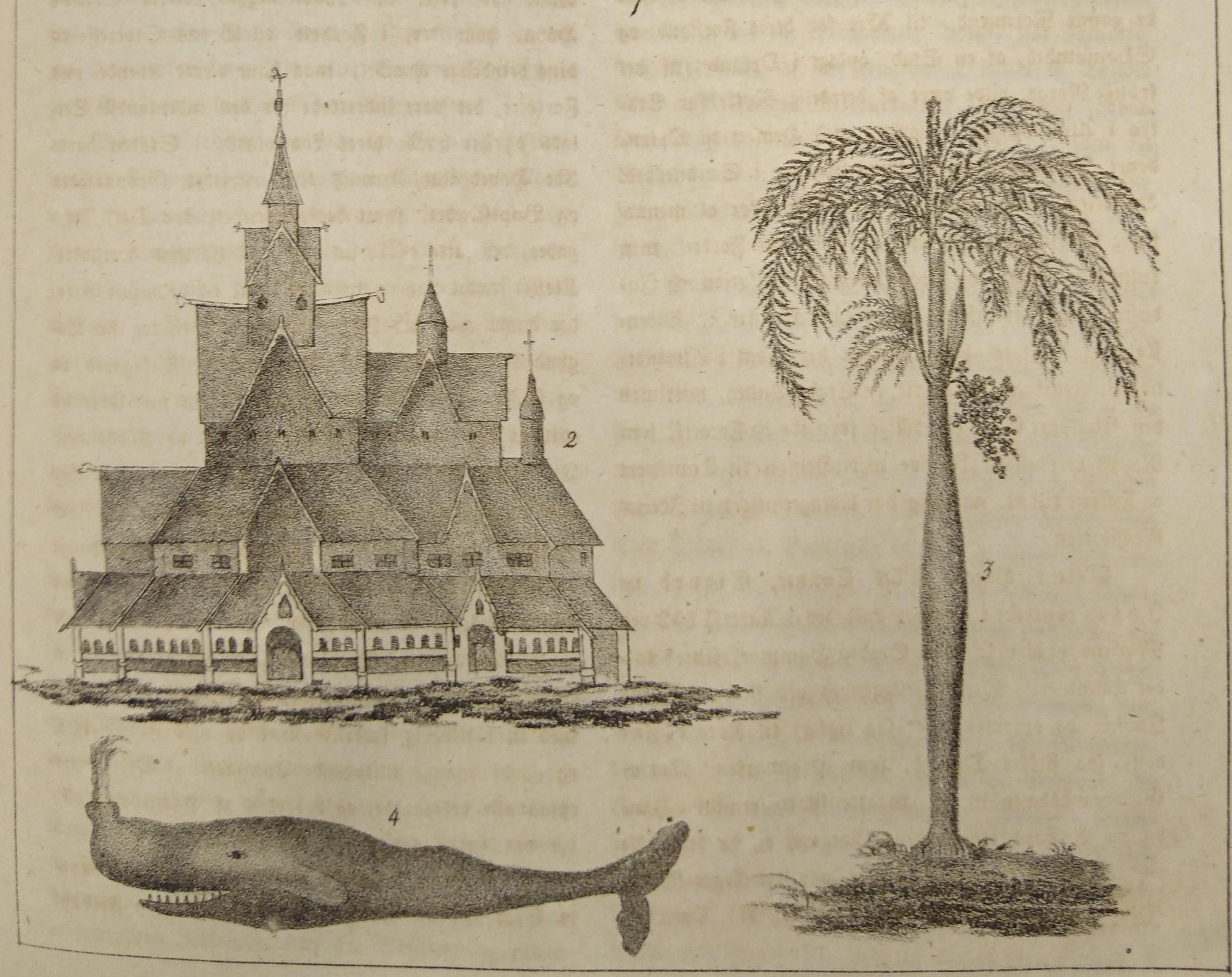 Figur-4-Penning-Magazin-Kaskelott-stavkirke